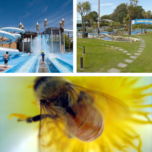 hawkes bay attractions - family activities