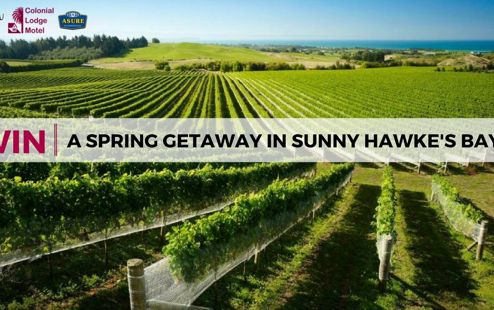 Win a Spring Holiday in Napier