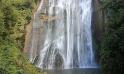 Off the beaten track in Hawke's Bay - shine falls